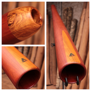 catégorie didgeridoo sandwich