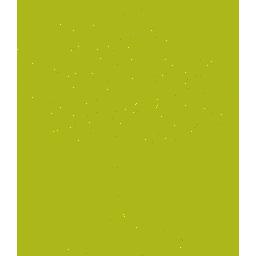 icone essences de bois variées